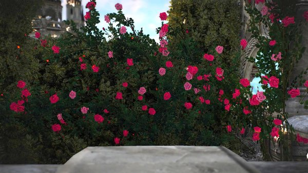 Кусты роз.. Ведьмак III (сборка Торна)