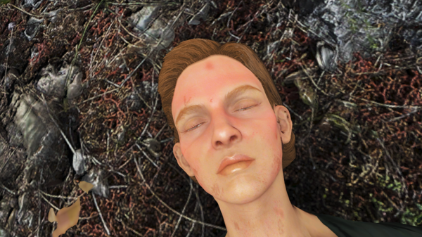 Поселенка после нападения Болотников.