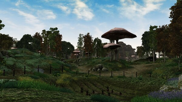 Morrowind 2021-06-14 11.01.49.643.jpg