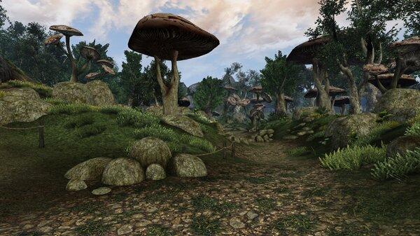 Morrowind Aperop, День 209, 10.18 0037.jpg