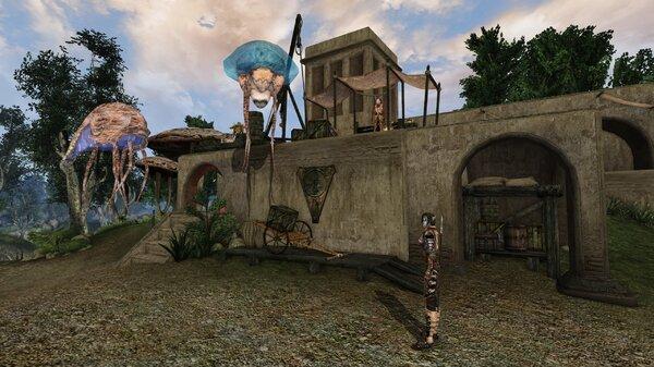 Morrowind Aperop, День 209, 09.47 0031.jpg