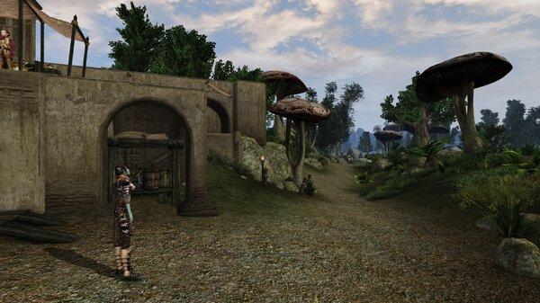 Morrowind Aperop, День 209, 09.53 0032.jpg