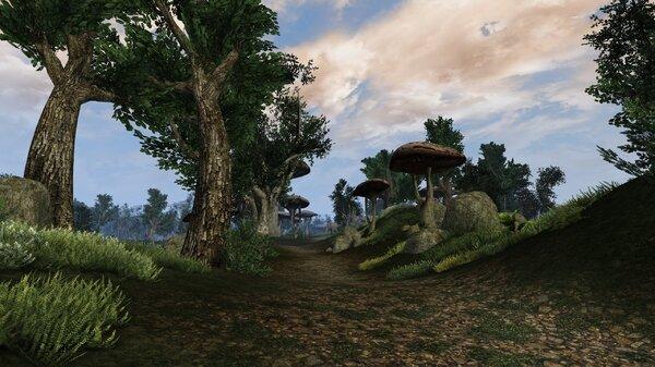 Morrowind Aperop, День 209, 09.43 0030.jpg