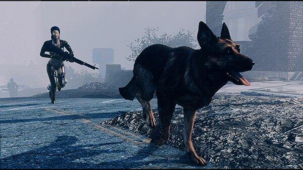 С псиной, по делам. Fallout-4 (Сборка 6.5)