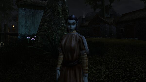 Morrowind 2021-06-14 09.26.54.431.jpg