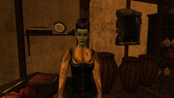 Morrowind 2021-06-14 05.18.43.470.jpg