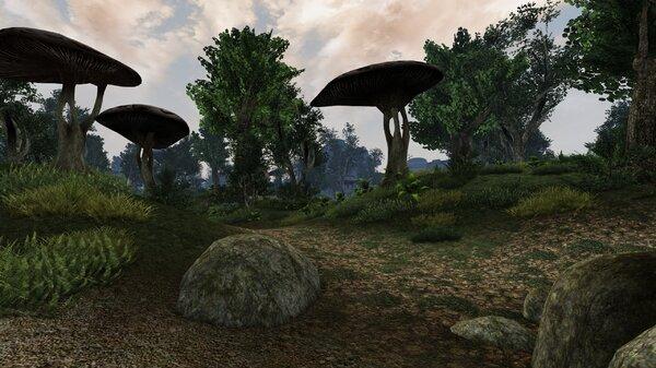 Morrowind Aperop, День 209, 10.02 0036.jpg