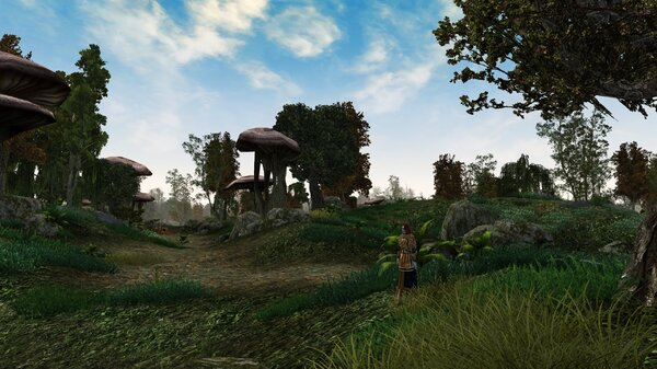 Morrowind 2021-06-14 11.05.31.855.jpg