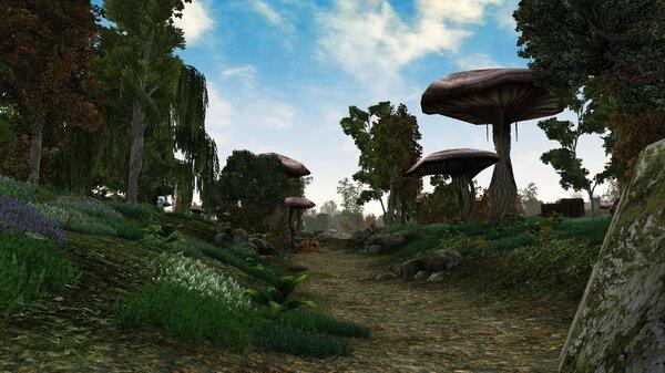 Morrowind 2021-06-14 11.06.10.147.jpg