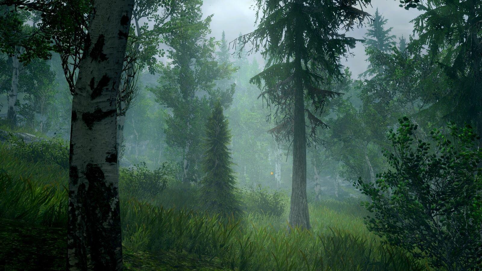 Туманно в лесу.. SkyrimSE (сборка 6.0)