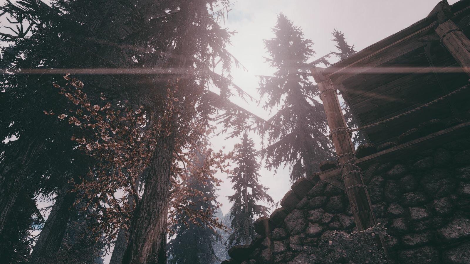Туманный пейзаж.. SkyrimSE (сборка 6.0)