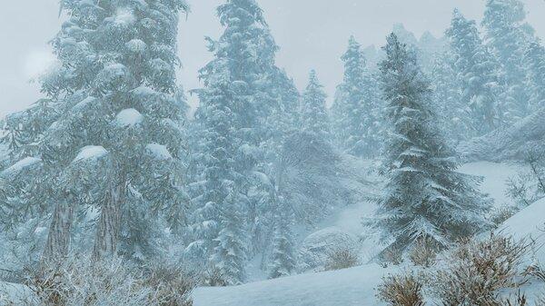 Снежный пейзаж.. SkyrimSE (сборка 6.0)